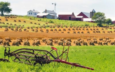 Protecting Your Farm into The Future: Pre-Nuptial and Post-Nuptial Agreements